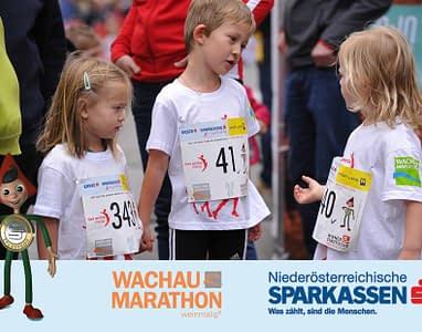 wachau-marathon-12