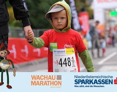 wachau-marathon-14