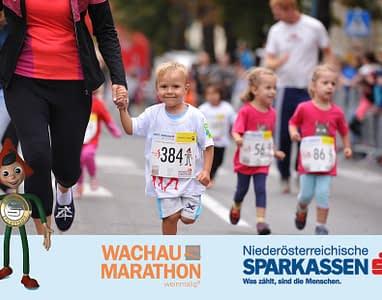 wachau-marathon-16