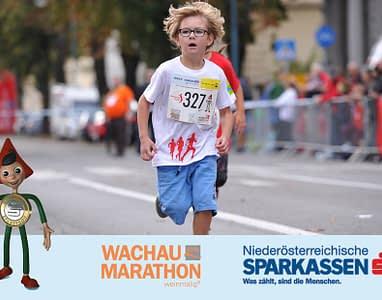 wachau-marathon-2