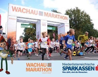 wachau-marathon-3