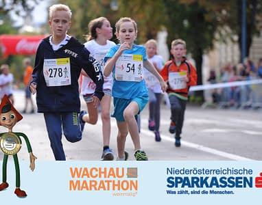 wachau-marathon-5